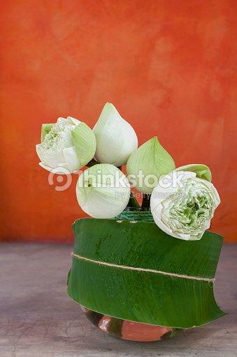 White Lotus Flower In Glass Vase Stock Photo Thinkstock