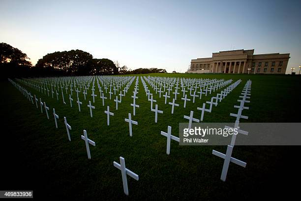 White memorial crosses are pictured on the lawn in front of the Auckland War Memorial Museum ahead of ANZAC Day on April 16 2015 in Auckland New...