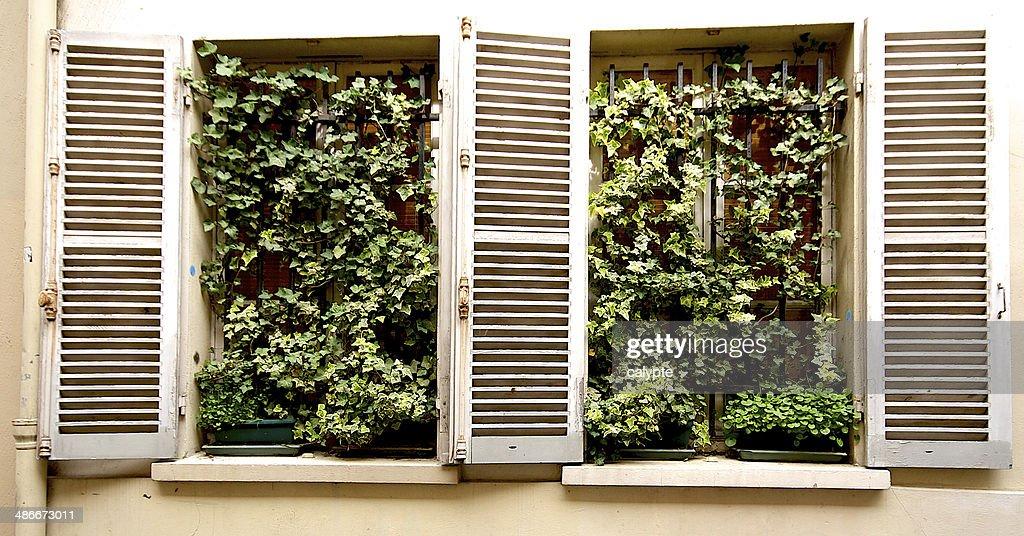 Maison de la fenetre best cuisines miniature maison de for La fenetre apartments
