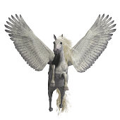 Pegasus is a legendary divine winged stallion and is the best known creature of Greek mythology.