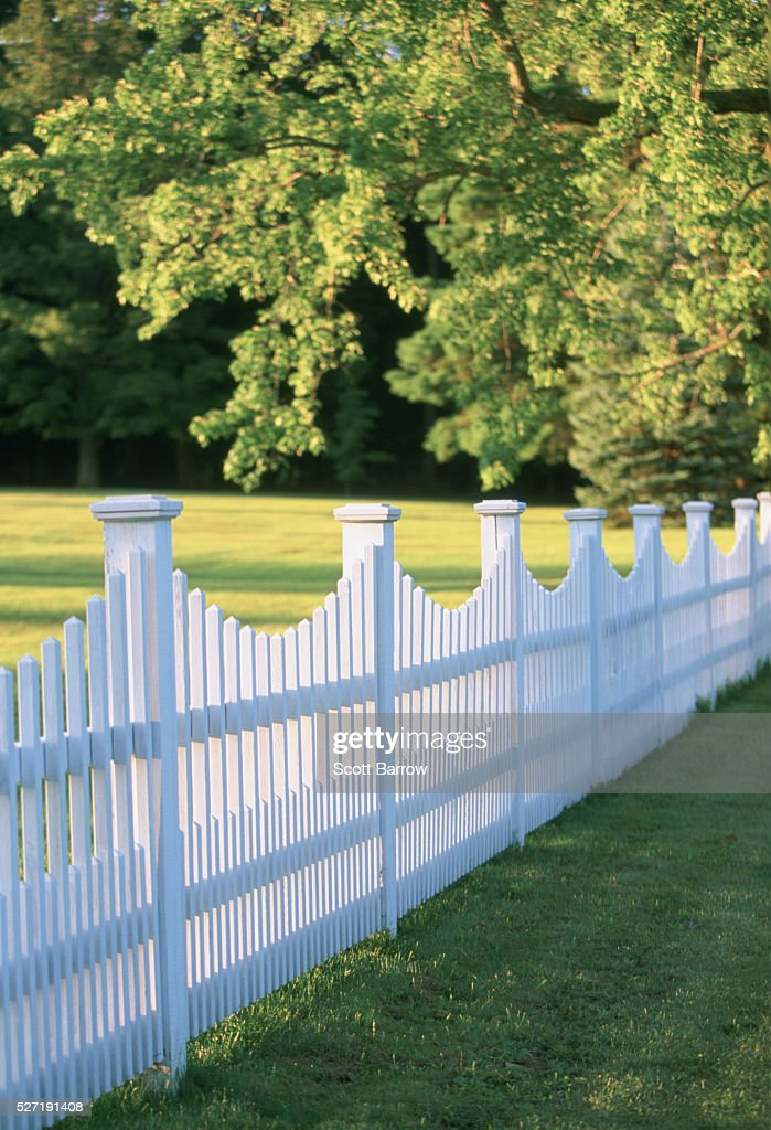 White picket fence : Stock Photo