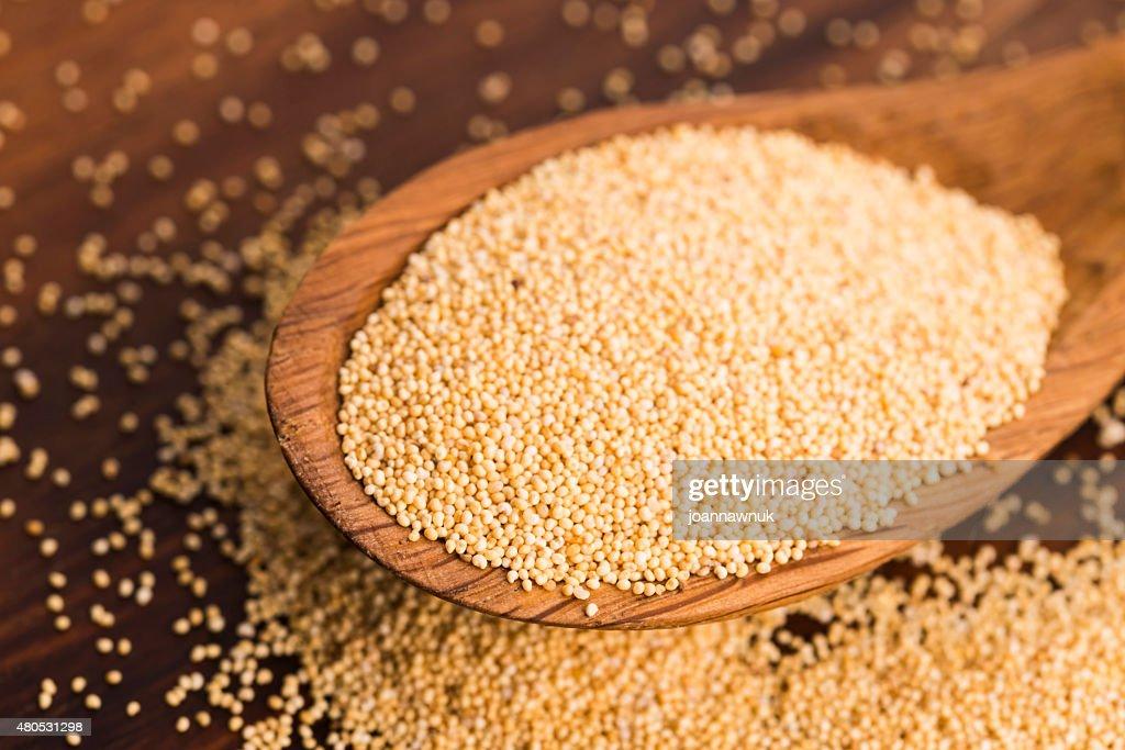 White poppy seeds : Stockfoto