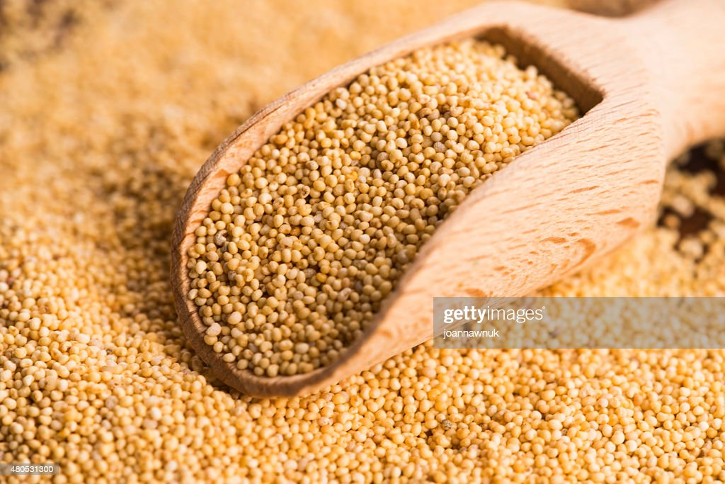 White poppy seeds : Stock Photo