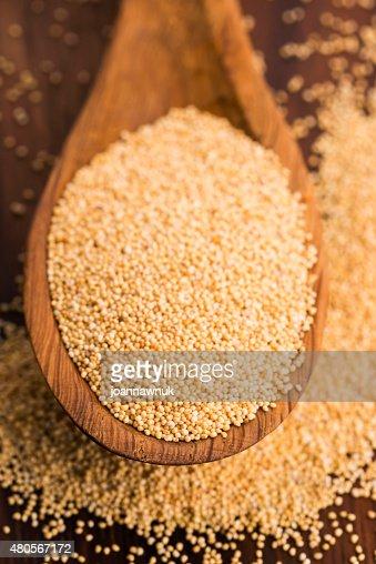 White poppy seeds : Stock Photo