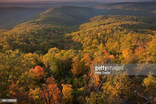 White Rock Mountain, Ozark Highlands Trail, Arkansas