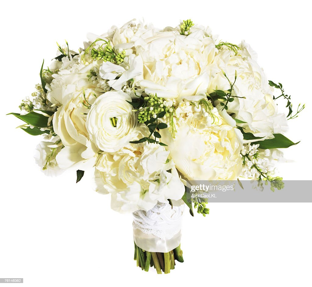 White rose floral bouquet bound with white ribbon : Stock Photo