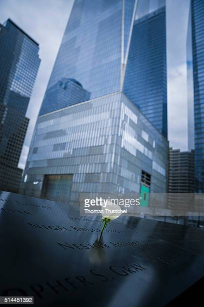 New York United States of America February 25 A white rose is in a writing of the name of a victim at the 9/11 Memorial in Manhattan on February 25...