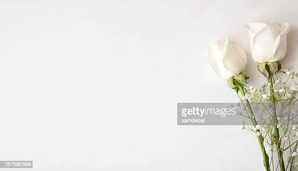White Rose Wedding Invitation