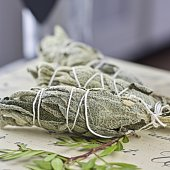 White salvia incense. Salvia ritual concept. White sage, scared sage, california sage, bee sage.