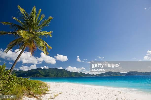Plage de sable blanc tropicale à l'île des Caraïbes