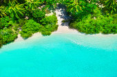 White sand beach with turquoise water and green plants from above