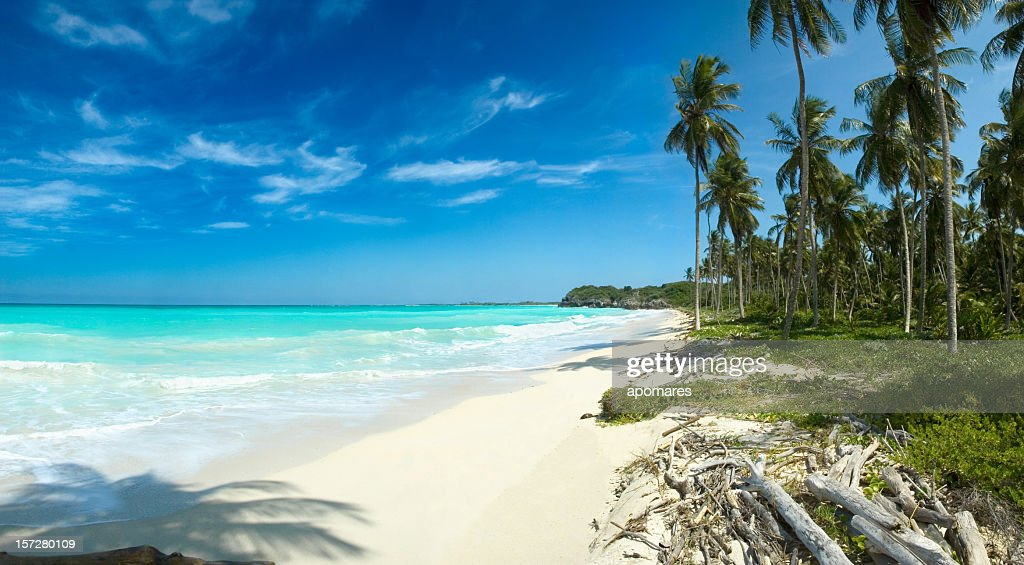 White sand lonely Tropical beach : Stock Photo