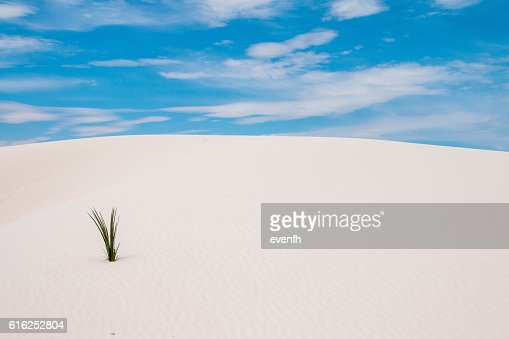 White Sands National Monument, New Mexico : Stock Photo