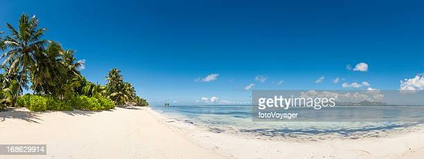 White sands palm tree beach blue ocean island lagoon panorama