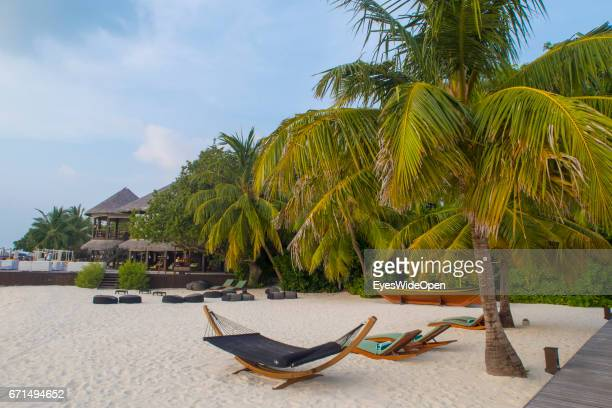 White sandy Beach and Palm Trees at Coco Bodu Hiti NorthMaleAtoll on February 24 2017 in Male Maldives