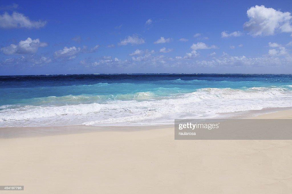 White Sandy beach : Stock Photo