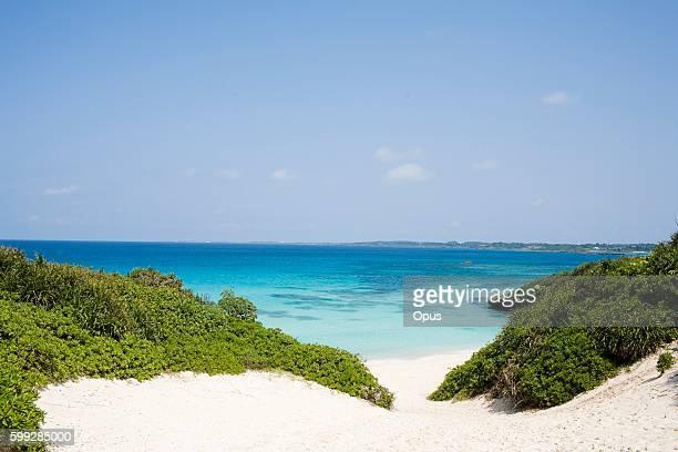 White Sandy Path Leading up to the Beach. Miyakojima, Okinawa Prefecture, Japan