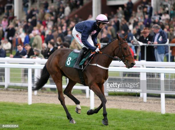 White Star Line ridden by Bryan J Cooper going to post for the Bruton Knowles 150th Anniversary Novices' Chase