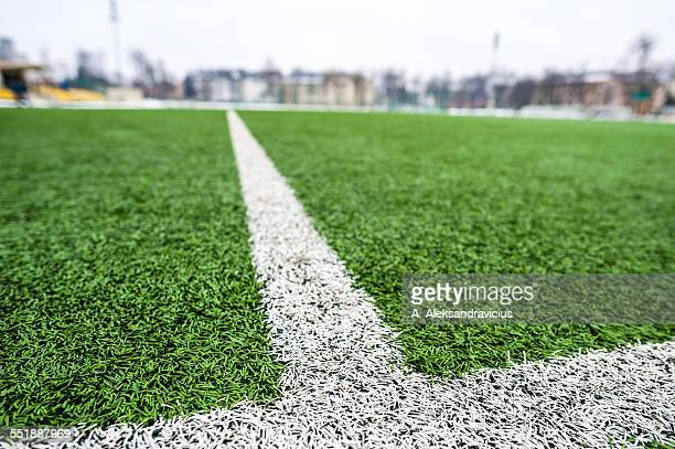 White stripes on the green soccer field