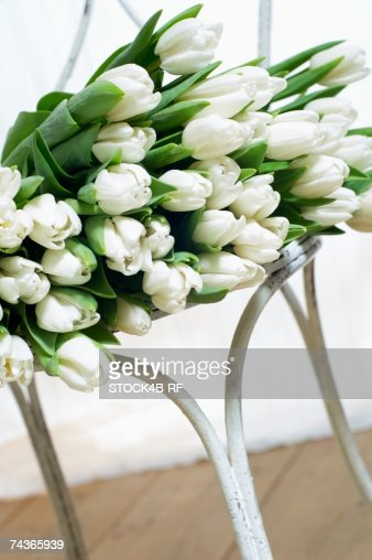 White tulips on a chair