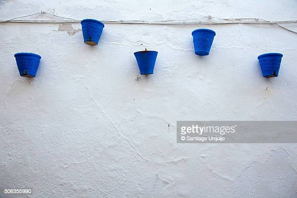 White wall with blue flowerpots