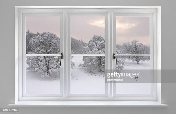 white windows with Winter view