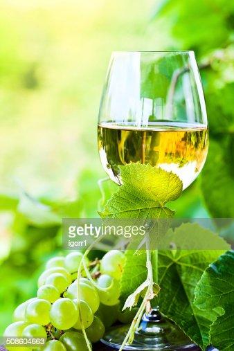 white wine in vineyard : Stock Photo