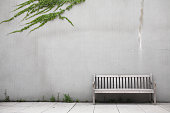 White wood bench by white wall with ivy creeping across it
