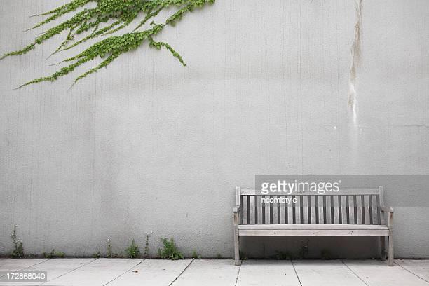 Bench & Ivy