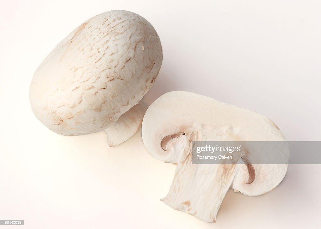 Whole and half a button mushroom. : Stock Photo