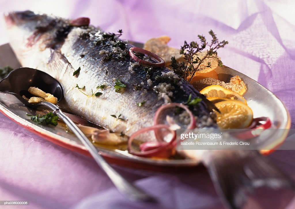 Whole cooked fish with citrus fruit and herbs on dish, close-up : Stock Photo