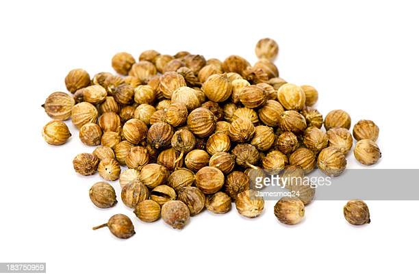 Whole coriander seeds on a white background