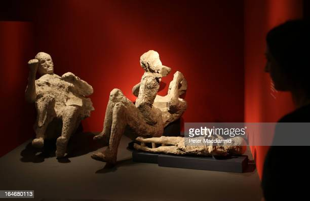 A whole family killed at Pompeii is displayed at the Life And Death In Pompeii And Herculaneum exhibition at The British Museum on March 26 2013 in...
