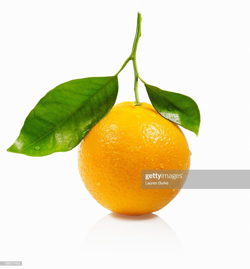 Whole Orange with Leaves on White Background