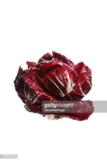 whole red endive or Cabbage