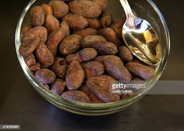 Whole roasted cocoa beans are displayed for tasting at Dandelion Chocolate on March 17 2014 in San Francisco California A new study sponsored by the...