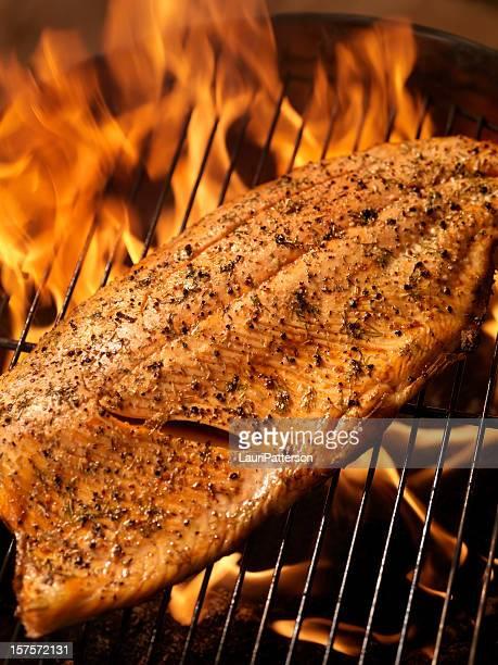Ensemble filet de saumon sur un barbecue en plein air