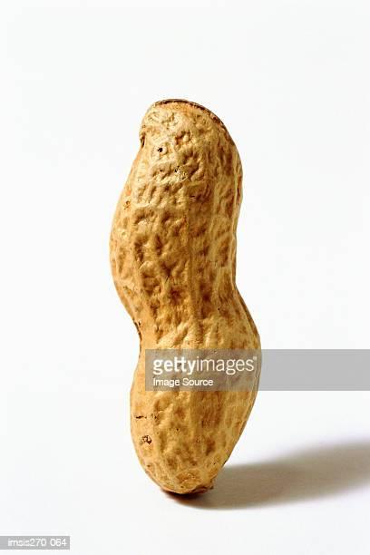 Whole upright peanut shell