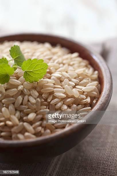 Wholegrain rice in terracotta bowl