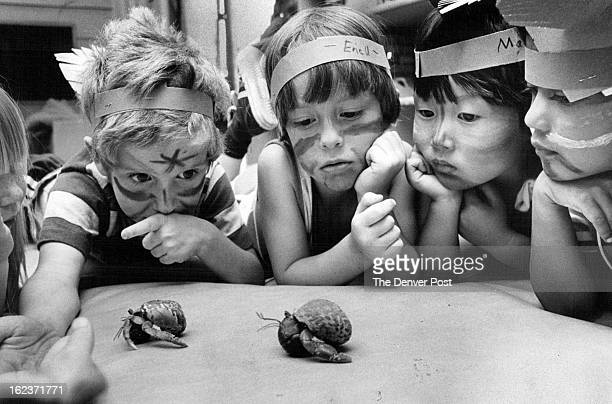 JUN 15 1981 JUN 17 1981 Who's to say hermit crab racing above may not have been an American Indian spectator sport In any event youngsters at Green...