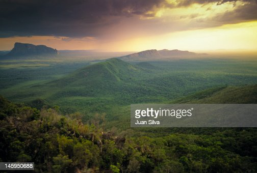 Wichuj and Uripicay tepuys in Amazon forest : Stock Photo
