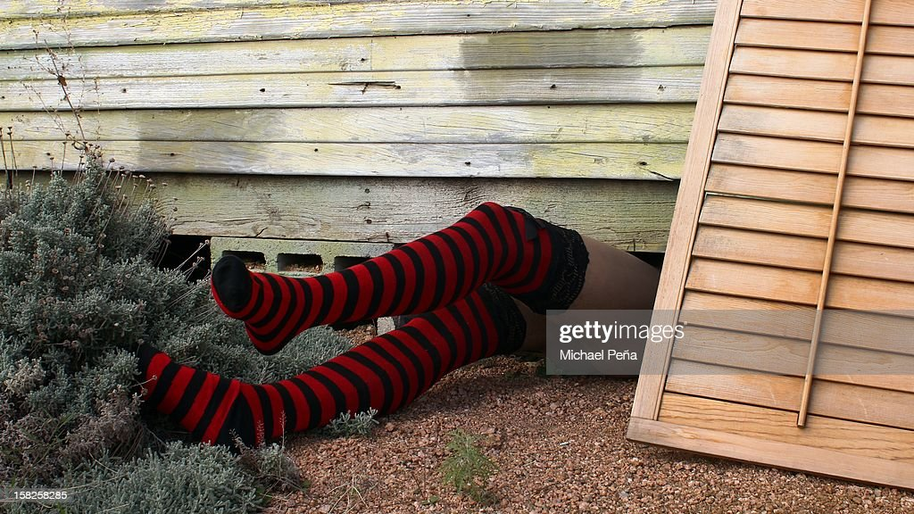 Wicked Witch : Stock Photo