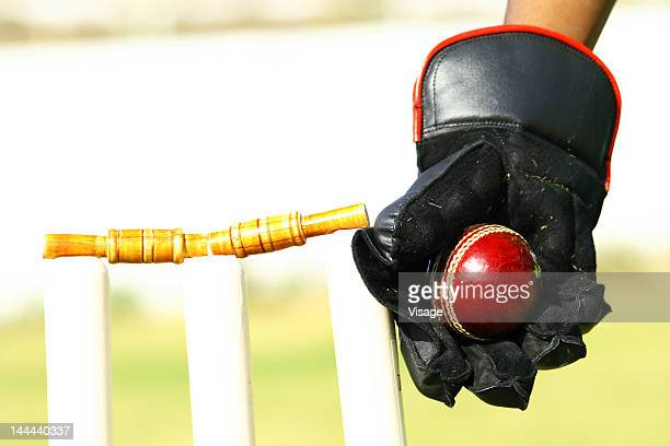 Wicket Keeper hitting the stumps
