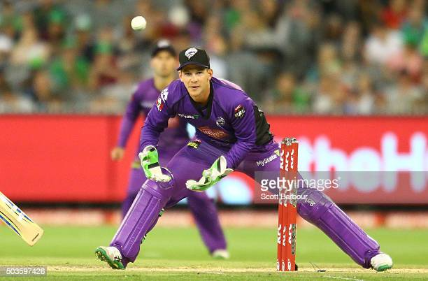 Wicketkeeper Tim Paine of the Hurricanes looks on during the Big Bash League match between the Melbourne Stars and the Hobart Hurricanes at the...