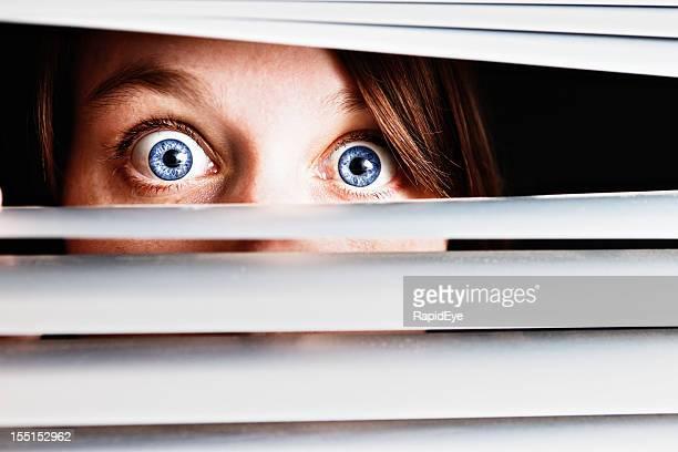 Wide eyed terrified young woman peeps through venetian blinds