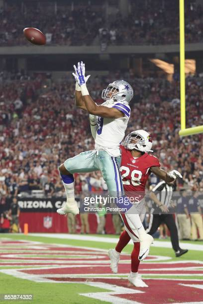 Wide receiver Brice Butler of the Dallas Cowboys grabs a 37 yard touchdown pass over cornerback Justin Bethel of the Arizona Cardinals during the...
