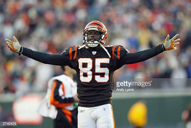 Wide receiver Chad Johnson of the Cincinnati Bengals celebrates during the game against the Houston Texans at Paul Brown Stadium on November 9 2003...