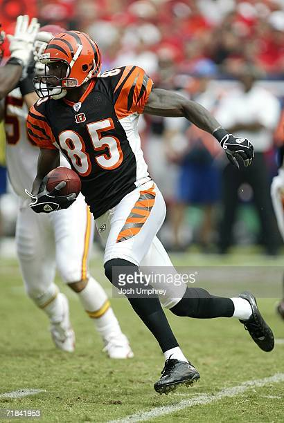 Wide Receiver Chad Johnson of the Cincinnati Bengals runs downfield against the Kansas City Chiefs on September 10 2006 at Arrowhead Stadium in...