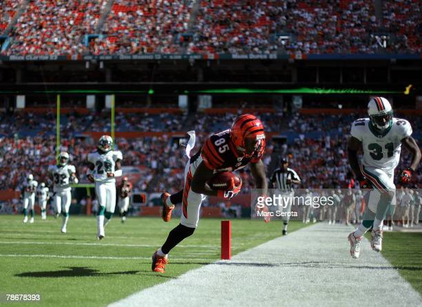 Wide receiver Chad Johnson of the Cincinnati Bengals scores on a touchdown catch against Lance Schulters of the Miami Dolphins in the first half at...