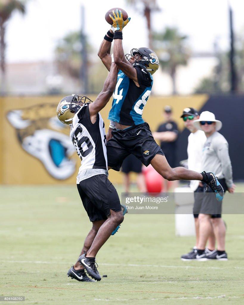 Jacksonville Jaguars Training Camp